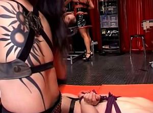 Gestrafte slaaf smeekt zijn kinky mistress om genade